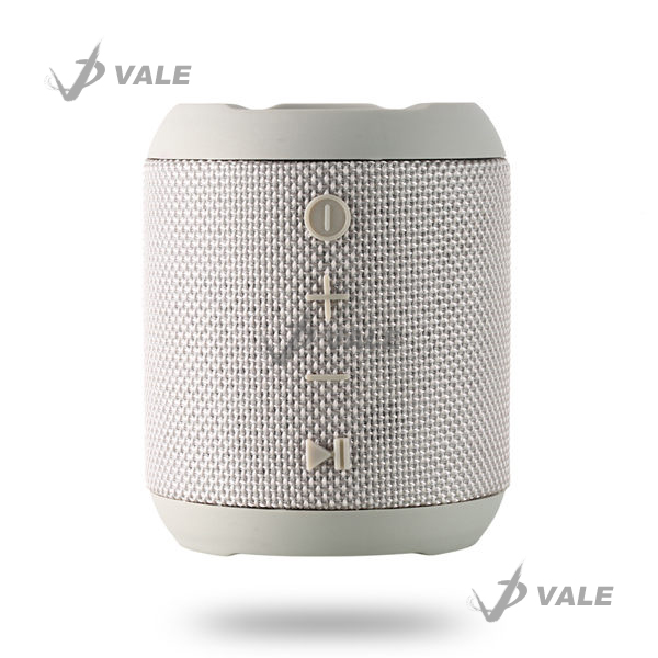 Bluetooth Speaker RB-M21 Gray